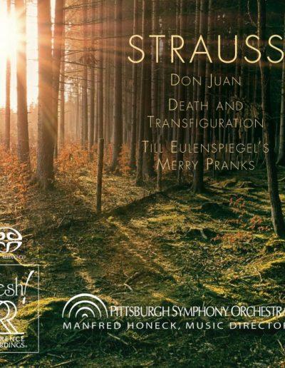 PSO Strauss